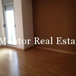 Banovo brdo450sqm house for rent (24)