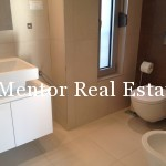 Banovo brdo450sqm house for rent (35)