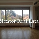 Banovo brdo450sqm house for rent (36)