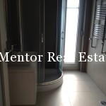 Banovo brdo450sqm house for rent (41)