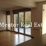 Banovo brdo450sqm house for rent (9)