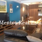 Centre 210sqm apartment for rent (11)