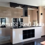 Dedinje 110sqm apartment for rent (7)