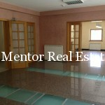 Dedinje 1200sqm luxury house for rent (5)