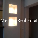 Dedinje 140sqm apartment for rent (14)