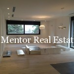 Dedinje 170sqm apartment for rent (2)