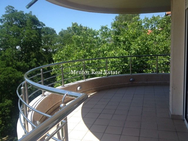 Dedinje 170sqm apartment for rent (5)