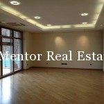 Dedinje 170sqm apartment for sale or rent (1)