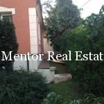 Dedinje 300sqm house for sale or rent (8)