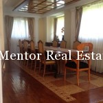 Dedinje 320sqm house for rent (20)