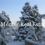 Dedinje 430sqm house with swimming pool for sale or rent (17)