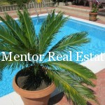 Dedinje 430sqm house with swimming pool for sale or rent (62)