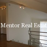 Dedinje 430sqm house with swimming pool for sale or rent (66)