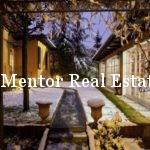 dedinje-500sqm-house-for-rent-or-sale-10