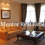 Dedinje 500sqm single house for rent (5)
