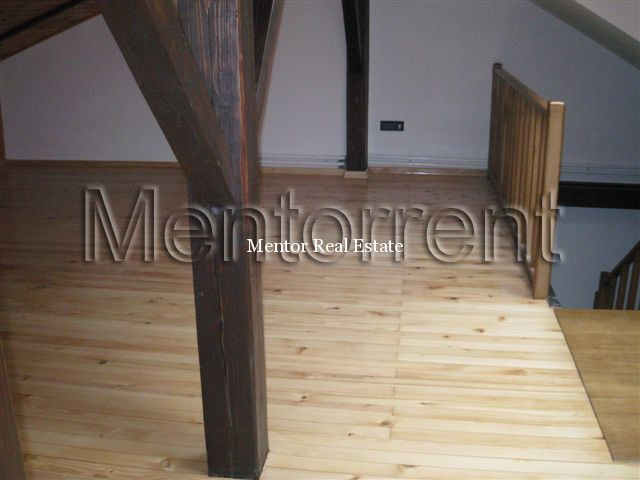 Dedinje apartment 155sqm with big garden for rent 1 (3)