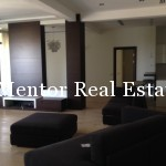 Dedinje luxury penthouse for rent 180+180sqm (11)