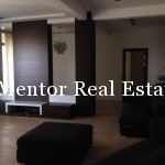 Dedinje luxury penthouse for rent 180+180sqm (28)