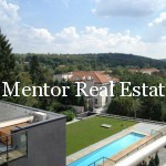 Dedinje single house with swimming pool (78)
