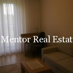 Luxury apartment for rent Dedinje (11)