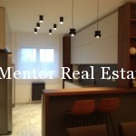 St. Sava Temple 170sqm apartment for rent (1)