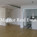 Vozdovac apartment 180sqm for rent or sale (4)