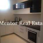 Vračar 110sqm furnished apartment for rent  (14)