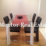 Vračar 110sqm furnished apartment for rent  (3)