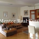 Vračar 120sqm furnished apartment for rent (11)