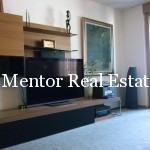Vračar 130sqm furnished apartment for rent (3)