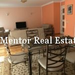 Vračar 160sqm apartm3nt for rent (6)