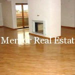 Vračar 250sqm apartment for rent (3)