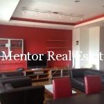 Vracar 120sqm apartment for rent (1)