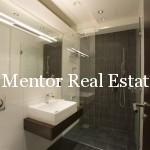 Vracar 180sqm luxury apartment (7)
