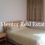 Vracar 230sqm penthouse (14)