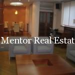 Vracar luxury apartment (3)