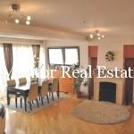 Vracar penthouse apartment (3)