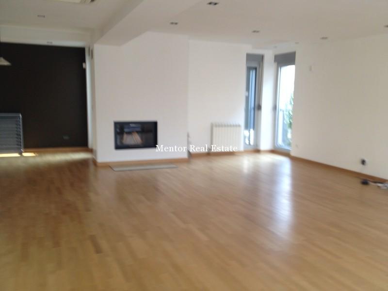 Banovo brdo450sqm house for rent (1)