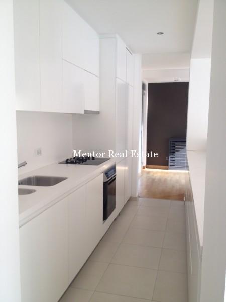 Banovo brdo450sqm house for rent (11)