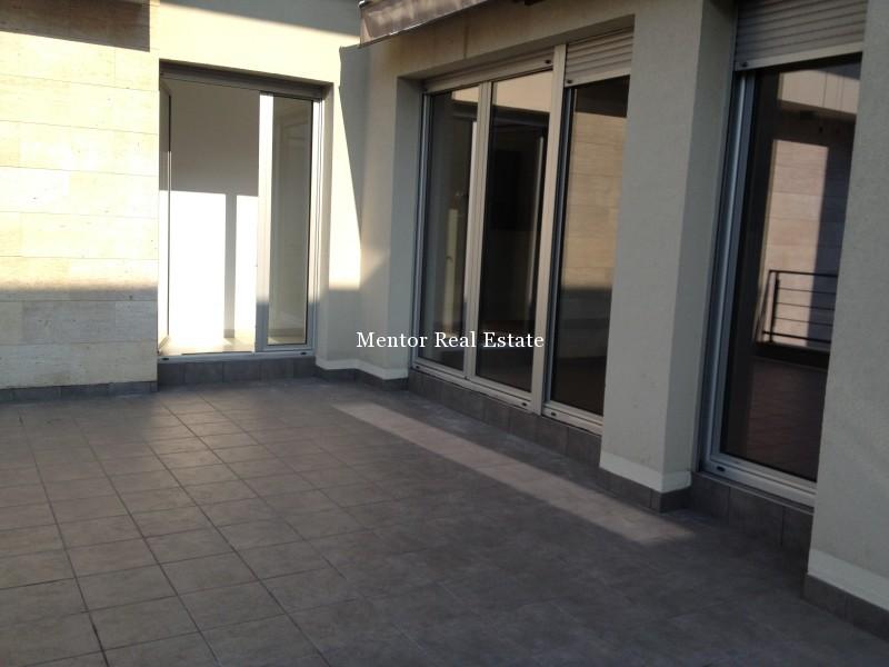 Banovo brdo450sqm house for rent (13)