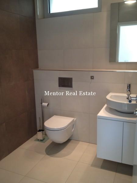 Banovo brdo450sqm house for rent (19)