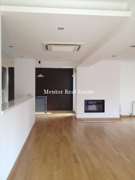 Banovo brdo450sqm house for rent (2)