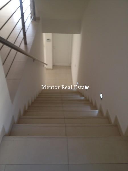 Banovo brdo450sqm house for rent (21)