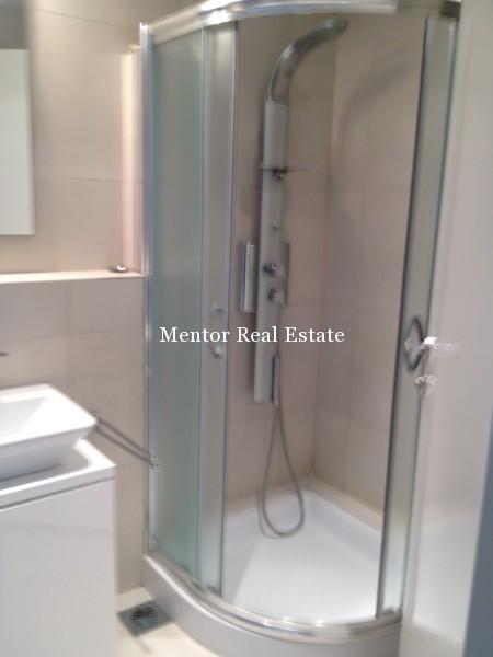 Banovo brdo450sqm house for rent (29)