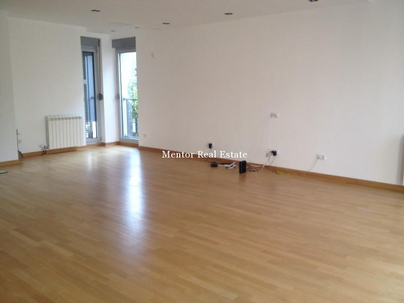 Banovo brdo450sqm house for rent (3)