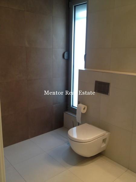 Banovo brdo450sqm house for rent (30)