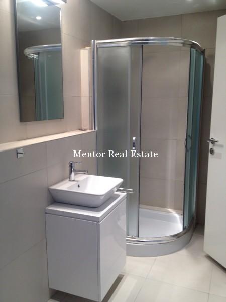 Banovo brdo450sqm house for rent (31)