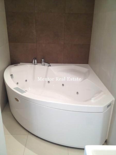 Banovo brdo450sqm house for rent (32)
