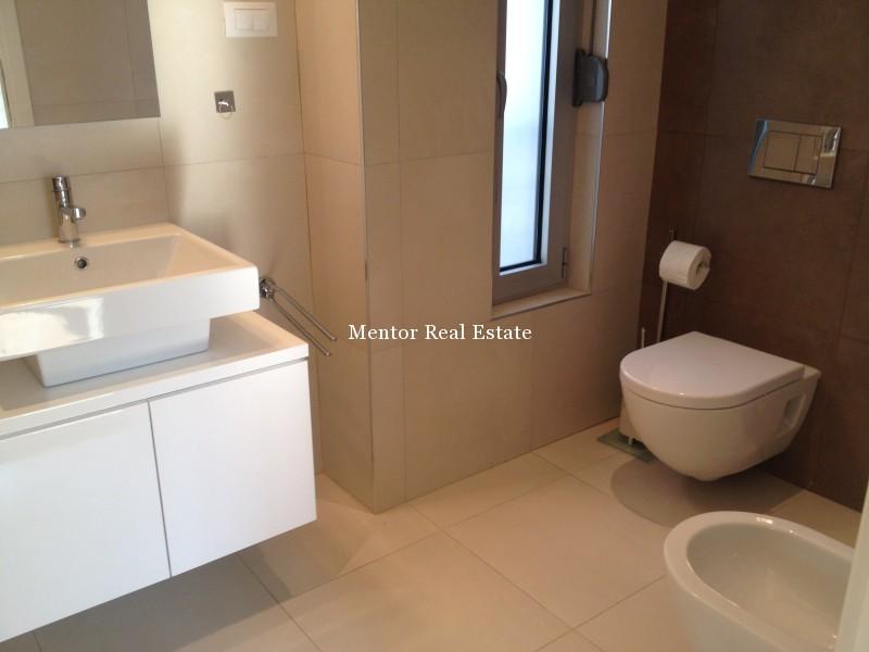 Banovo brdo450sqm house for rent (35)
