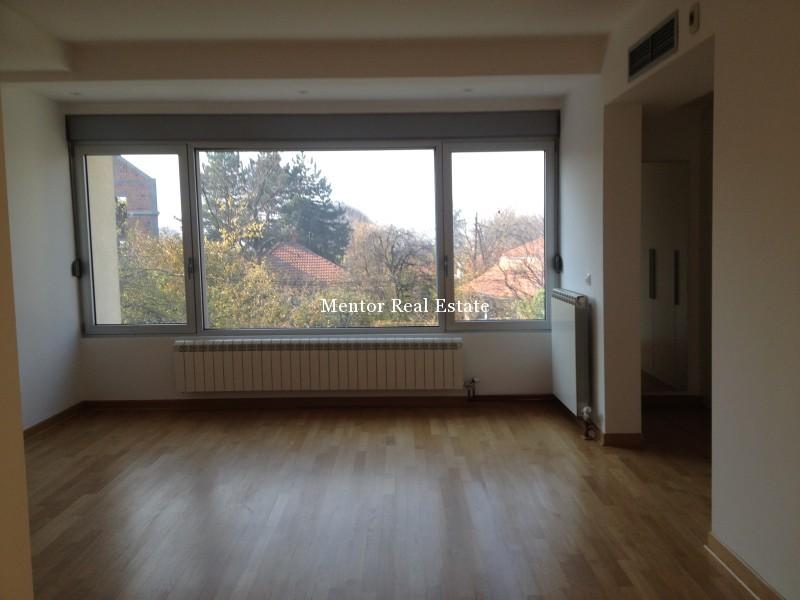 Banovo brdo450sqm house for rent (36)